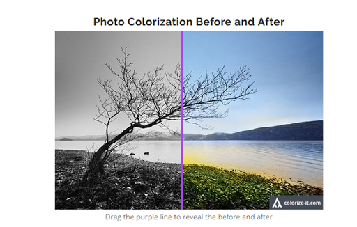 Amazing Websites black and whote to color image